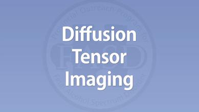 Carmen Rasmussen - Diffusion Tensor Imaging
