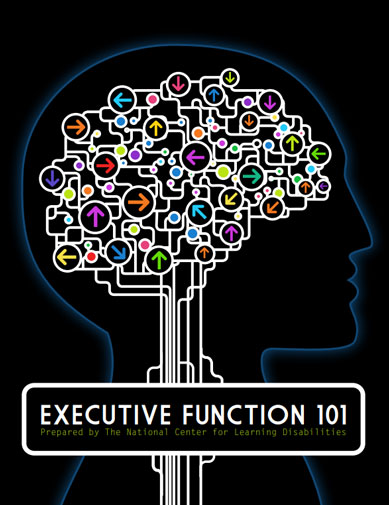 Executive Functioning e-book