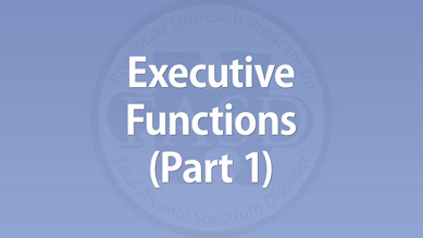 Executive Functions (Part 1)