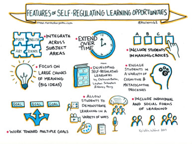 Features of Self-Regulating Learning Opportunities