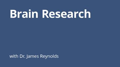 James Reynolds - Brain Research
